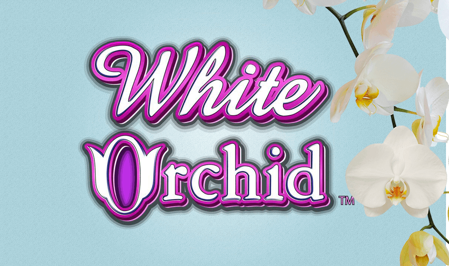 White Orchid Slot Machine Play Free Slot Game By